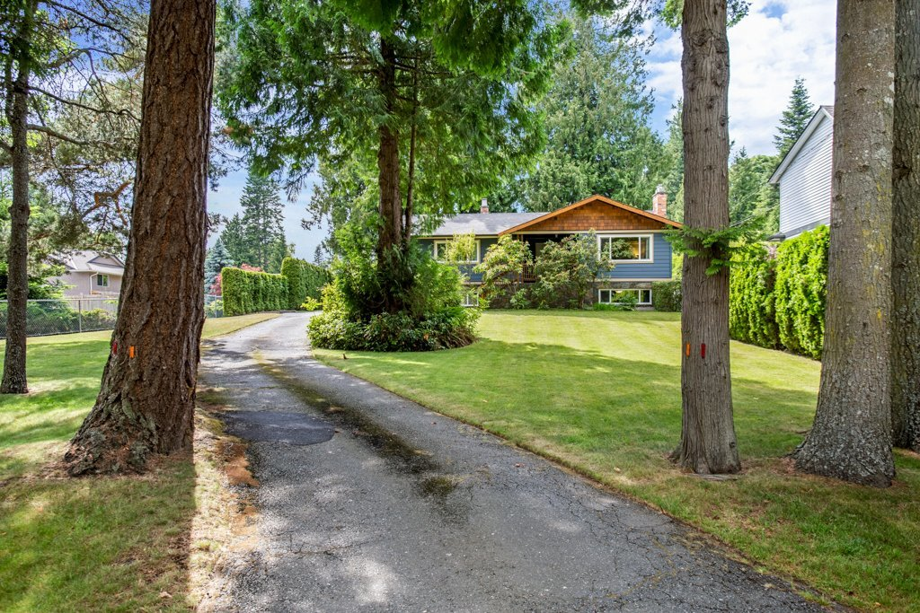 Large lot in Cordova Bay